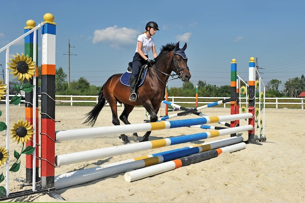 Girl riding a horse jumps over a barrier on training.