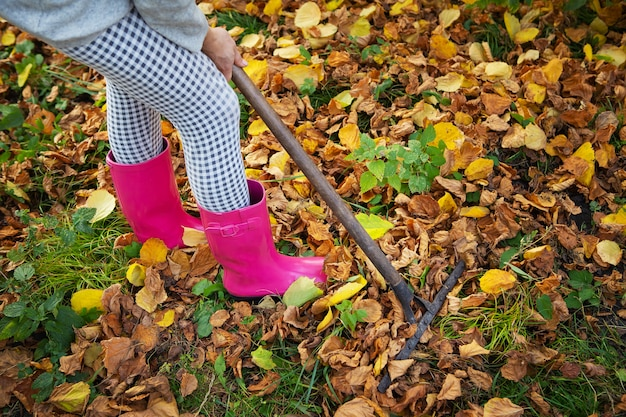 A girl in rubber boots holds a rake and rakes the fallen leaves.