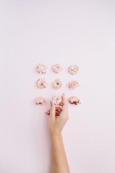 ピンクの乾いたバラのつぼみを持っている女の子の手