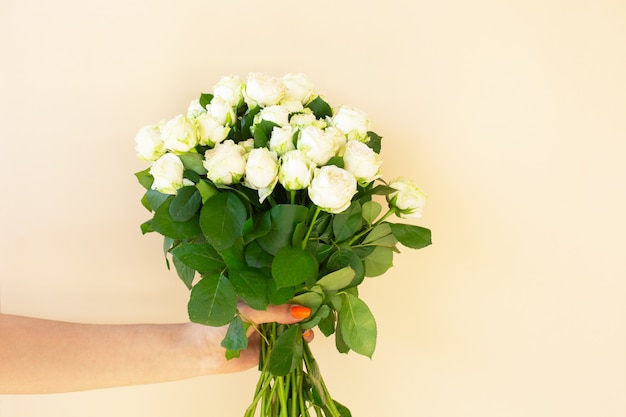 Girl's hands holding beautiful bouquet of white roses on light background