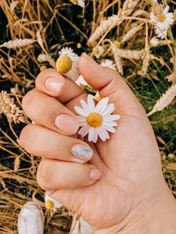 麦畑の背景に女の子の手