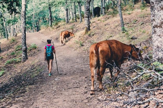 걸 스카우트 하이킹과 숲에서 소 사이 산책.