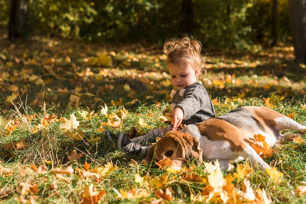 Girl sitting near beagle dog lying on grass in forest
