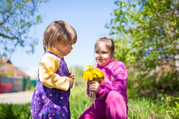 草の上に座って、夏の晴れた晴れた日に緑の自然の屋外でジャンプスーツを着た小さな男の子に咲く黄色のタンポポの花を与える女の子。幸せな子供時代の概念