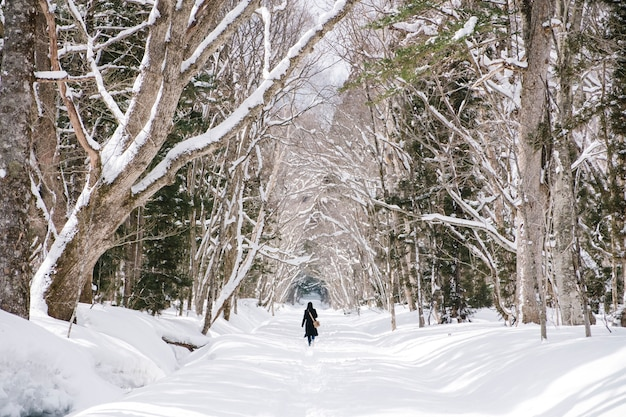 Girl in snow forest at togakushi shrine, japan