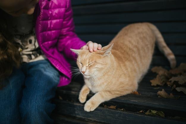Girl stroking the cat