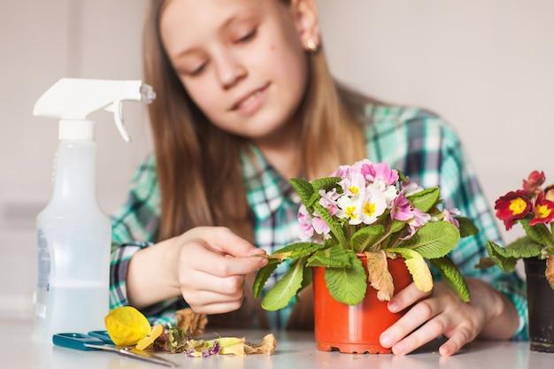 彼女の家の植物の世話をする少女