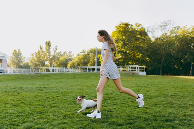 Girl throwing orange frisbee to small funny dog, which catching it on the green grass. little jack russel terrier pet playing outdoors in park. dog and owner on open air.