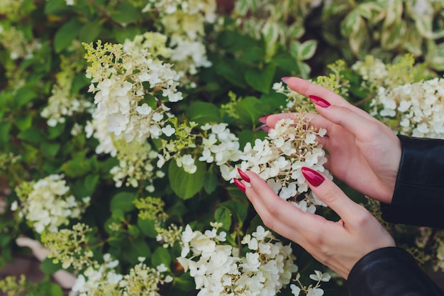 Girl touches flowering white branch with hand.