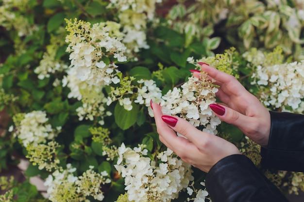Девушка касается цветущей белой ветви рукой.