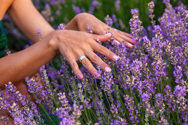 The girl touches the lavender flowers on the farm, a small field with lavender