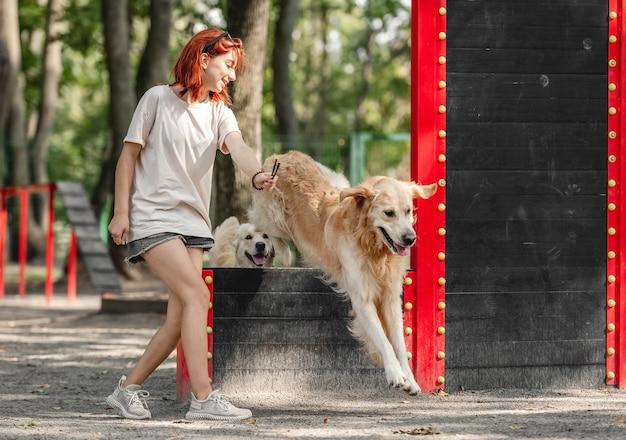 公園で2匹のゴールデンレトリバー犬を訓練している女の子。屋外で遊ぶ純血種のペットと女性のティーンエイジャー