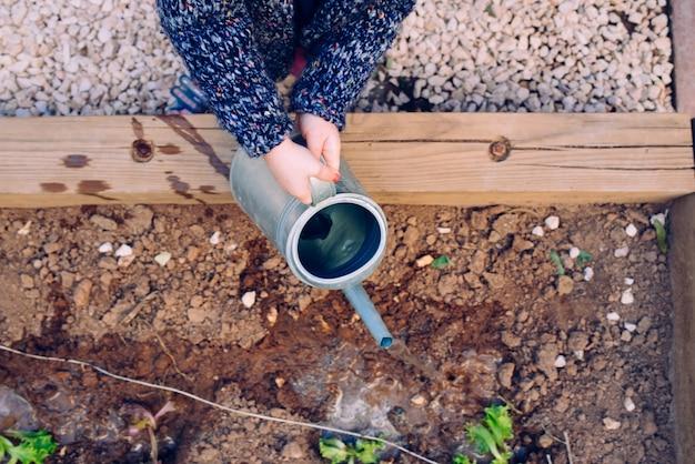 급수를 사용하는 소녀는 학교에서 정원을 키울 수 있습니다.