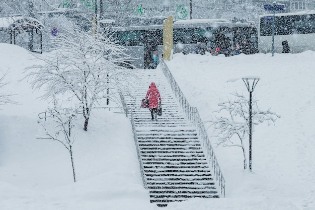 Girl walk in the park during a snowfall