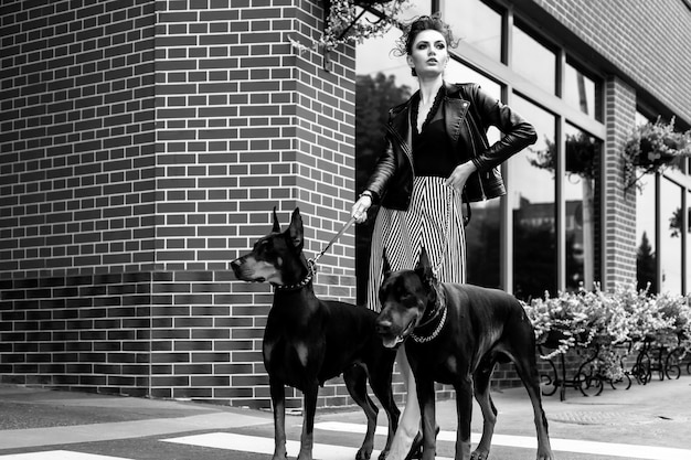 A girl walks along the street in the city along the building with two dobermans on a leash