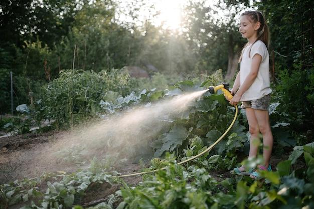 아침에 여름에 정원을 급수하는 여자