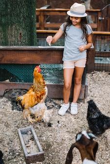 농장에서 암 탉에 음식을 먹이 모자를 착용하는 여자