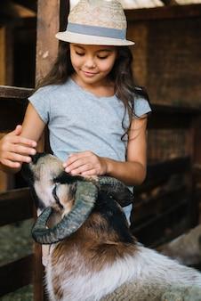 Girl wearing hat patting sheep