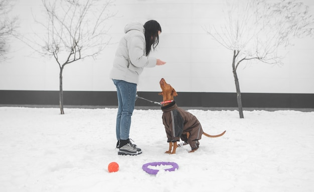 Girl wearing winter clothes on a dog for a leash