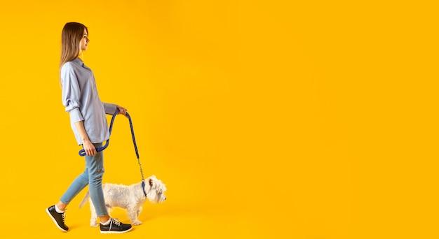 Девушка с собакой на поводке на желтом фоне. панорамный вид с местами для вашего текста. фото высокого качества