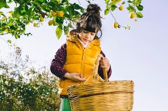Girl with basket in garden