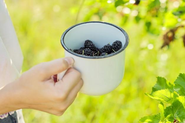マグカップで果実の収穫、夏の庭で桑の木を持つ少女