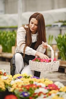 Девушка с цветами в оранжерее. садовник в фартуке. уход за цветами.