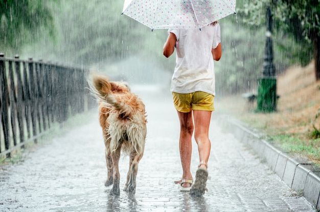 Girl with golden retriever dog during rain running under umbrella outside. preteen kid with doggy pet walking in rainy day