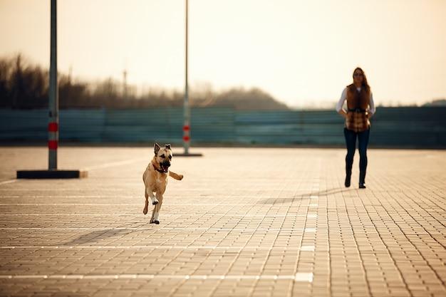 Девушка с ее собакой отдыхает на открытом воздухе