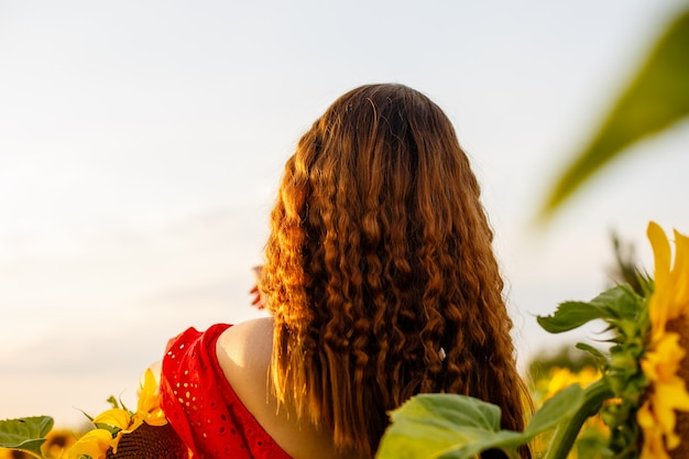 Girl with long hair stands with her back in field of blooming sunflowers in the rays of the setting ...