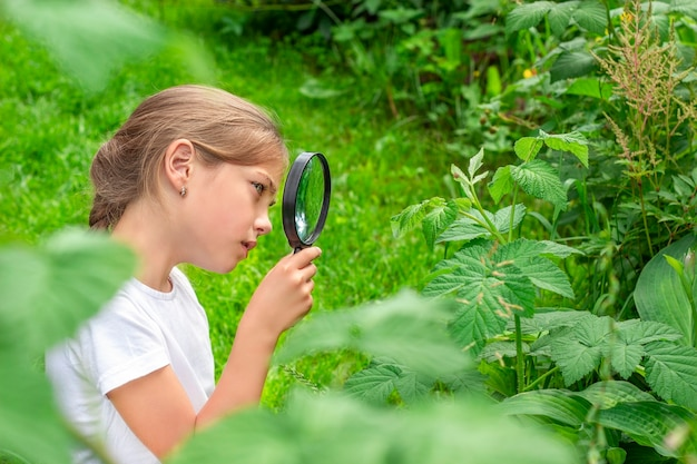 A girl with a magnifying glass examines the plants in the garden