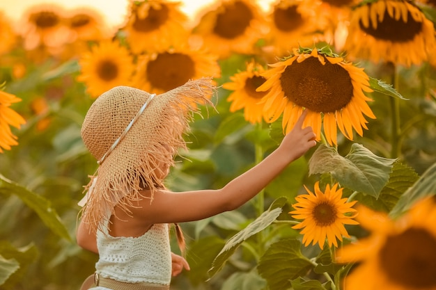 A girl with pigtails on a walk at sunset on a field of sunflowers examines a large flower. side view.