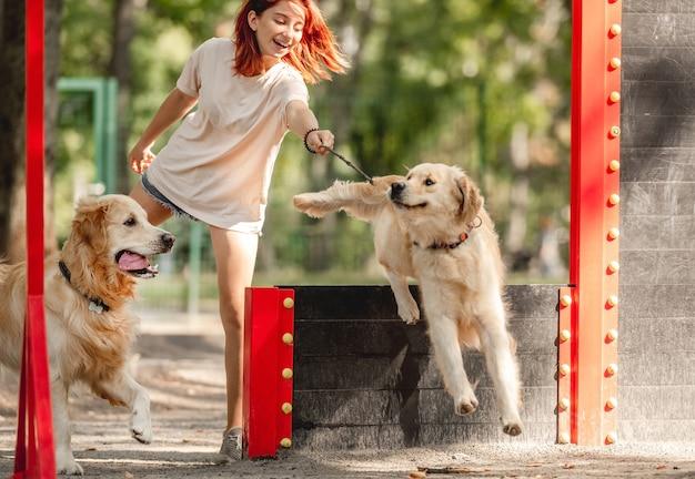 公園でトレーニングしている2匹のゴールデンレトリバー犬を持つ少女。屋外で純血種のペットと女性のティーンエイジャー