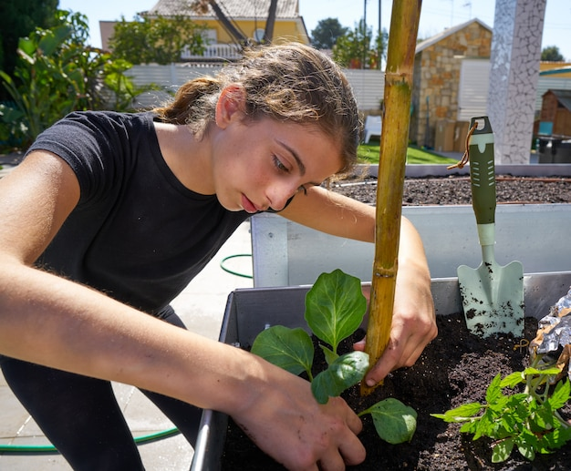 Girl working in orchard raised bed garden