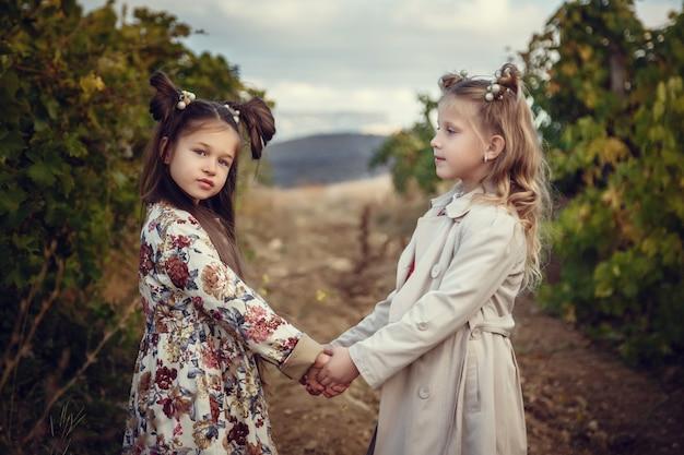 9月にブドウ園を収穫する女の子は、イタリアで厳選されたブドウの房を集めて収穫を増やします。生物学的概念id、有機食品、手作りの高級ワイン