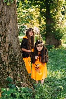Девушки в костюмах ведьмы скрываются возле дерева