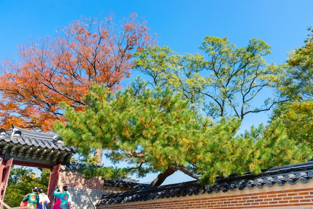 The girls in korean national dress or hanbok and traditional korean door and wall in autumn season with blue sky background.