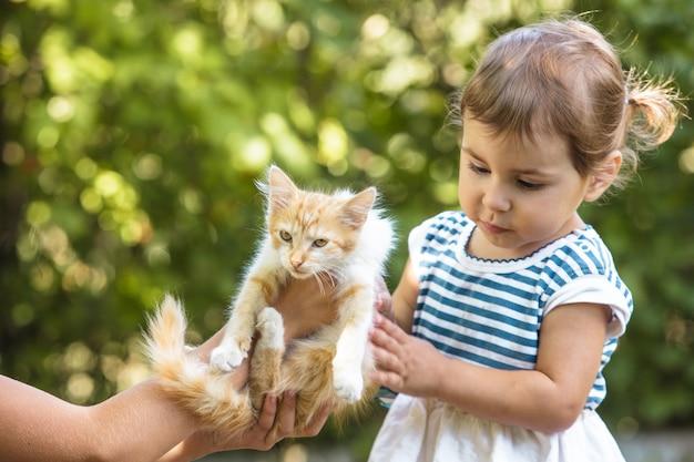 소녀들은 공원에서 야외에서 새끼 고양이와 놀고 있다