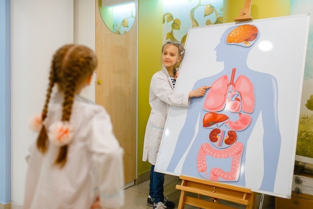 Girls playing doctor at poster with human organs