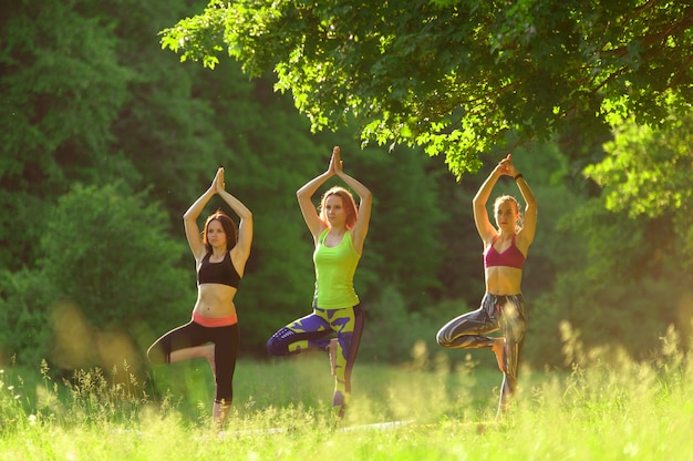 Girls posing yoga outside in the forest in the morning