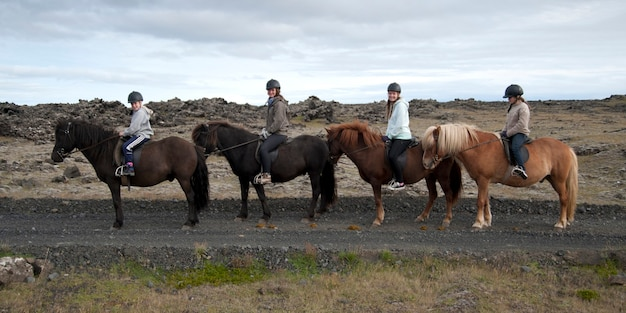 Girls in riding helmets in a row on icelandic horses
