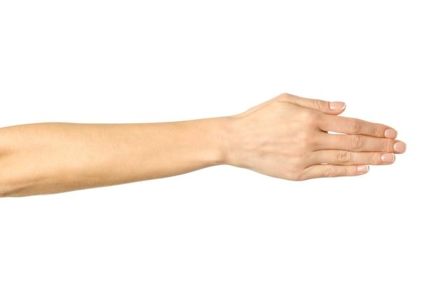 分離された握手のために手を与える
