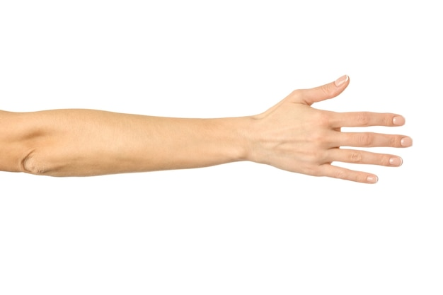 握手を求めて手を与える。白で隔離される女性の手ジェスチャー