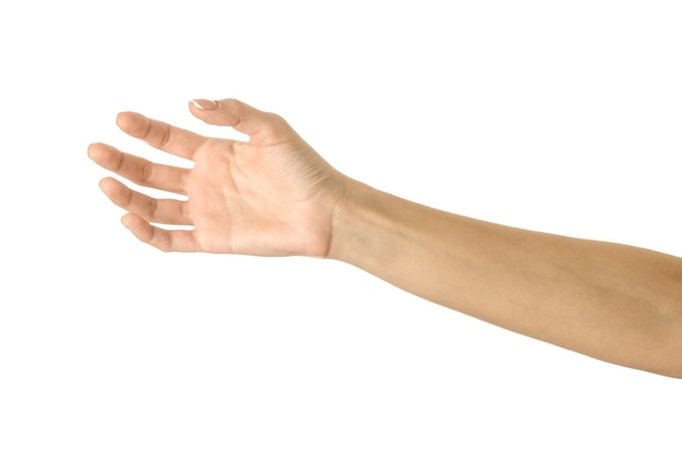 Giving, reaching or holding hand. woman hand with french manicure gesturing isolated on white wall. part of series