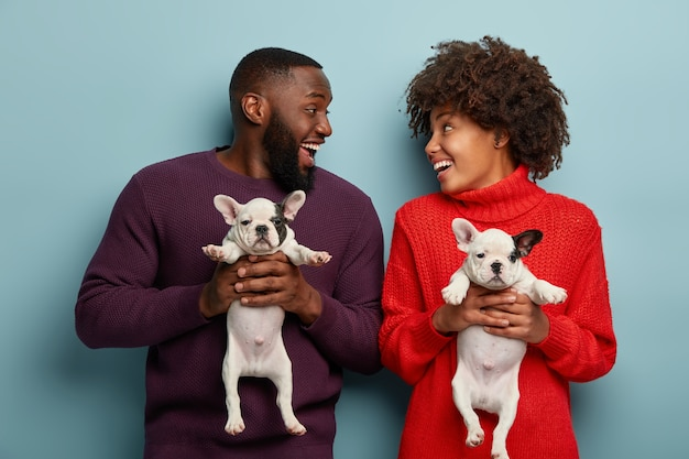 Glad dark skinned husband and wife laugh and play together with little puppies, hold beloved small dogs, want to have walk in park, spend day together. family and animals concept
