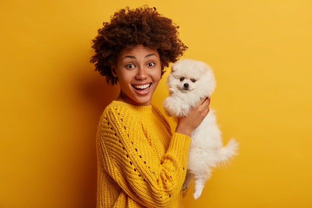 Glad dark skinned pet owner raises little spitz dog in hands, dressed in casual outfit, talks to lovely domestic animal, celebrate birthday together, stand against yellow background
