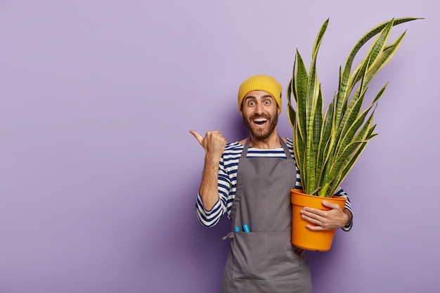 Glad salesman poses in florist shop with pot of green snake plant