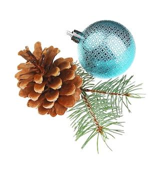 ガラス球strobileと松の木の枝が分離されました
