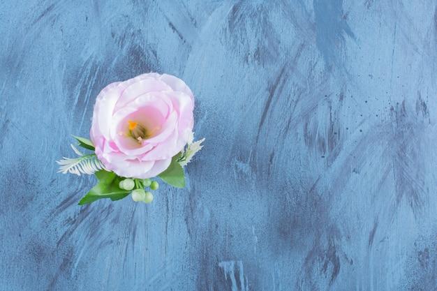Bottiglia di vetro del singolo fiore rosa con foglie sull'azzurro.