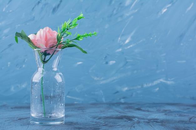Bottiglia di vetro di singola rosa rosa sull'azzurro.